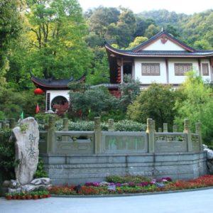 Xi hu Long Jing