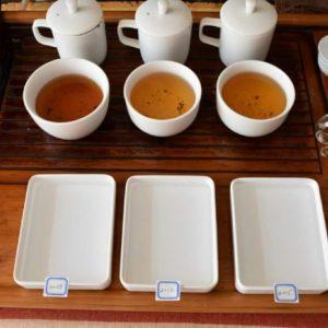 Epic Tea Tasting