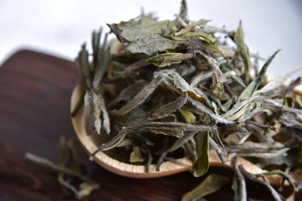 Bai Mu Dan - Top Grade 2014 closeup aged white tea