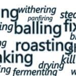 tea processing terms