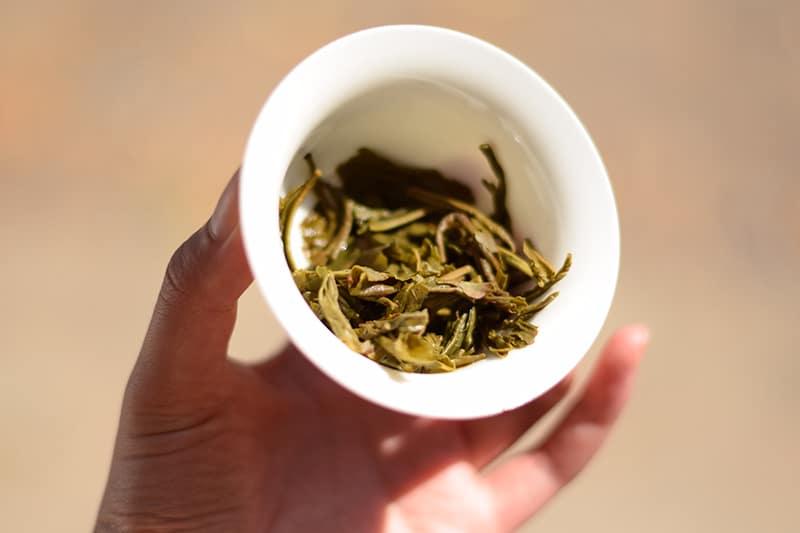 Guizhou Green Tea brewed leaves